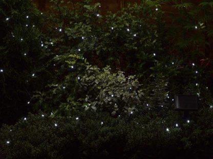 Lichtketting 100 witte lampjes 3